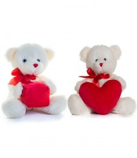 Heart and Gift Bear