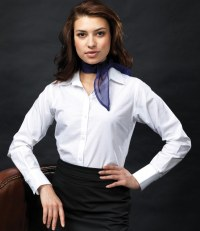 Ladies Long Sleeve Signature  Oxford Shirt
