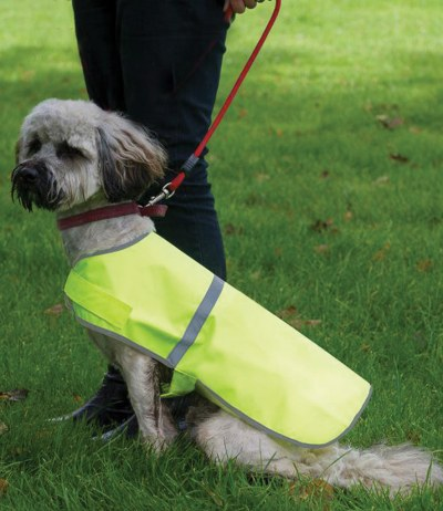Refective Dog Vest